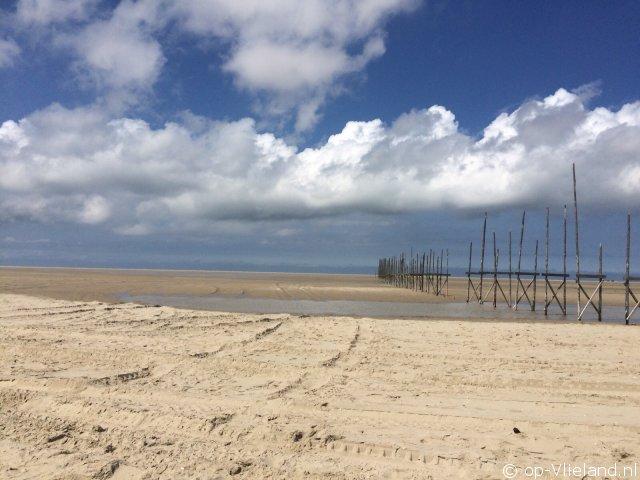 Zevenster Flierefluiter, vakantiehuis voor 6 personen in de duinen bij het strand